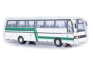 SETRA S215HD KAESSBOHRER 1977 WHITE/GREEN